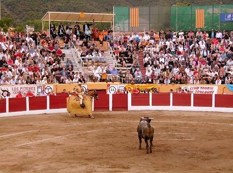 Ceret – Communiqué de l'ADAC concernant la Feria 2020