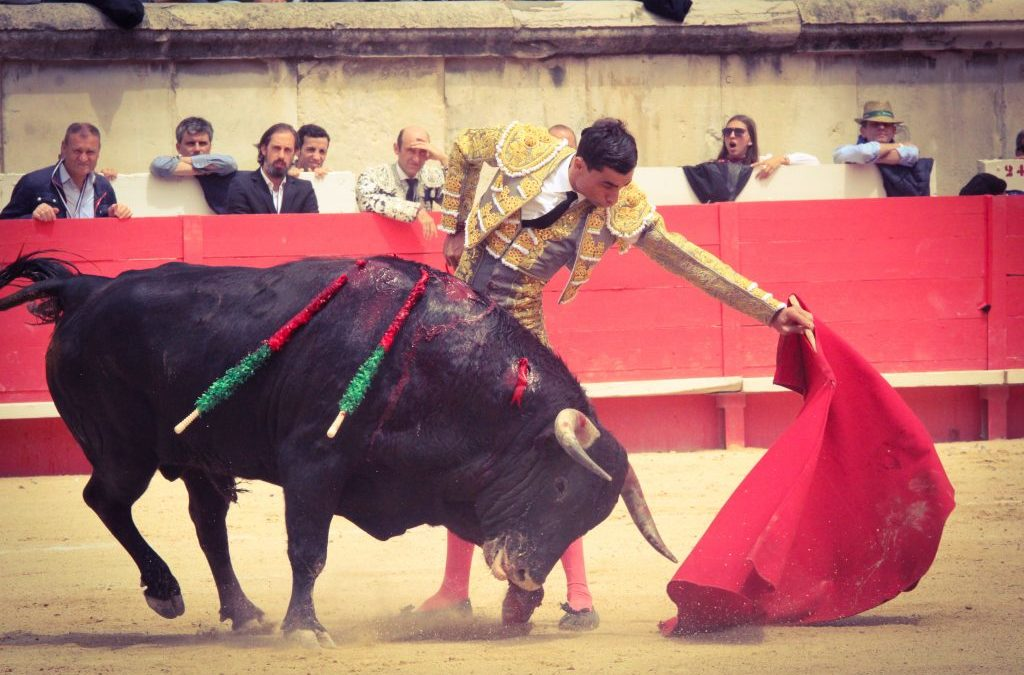 Le matador de toros PACO UREÑA sérieusement blessé à Abaran.