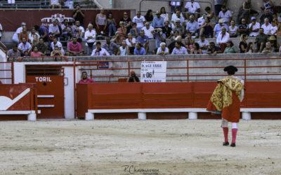 Beaucaire (26.07.2020) – Reportage photographique de la novillada – Desafio Conde de la Corte – Dolores Aguirre Ybarra.
