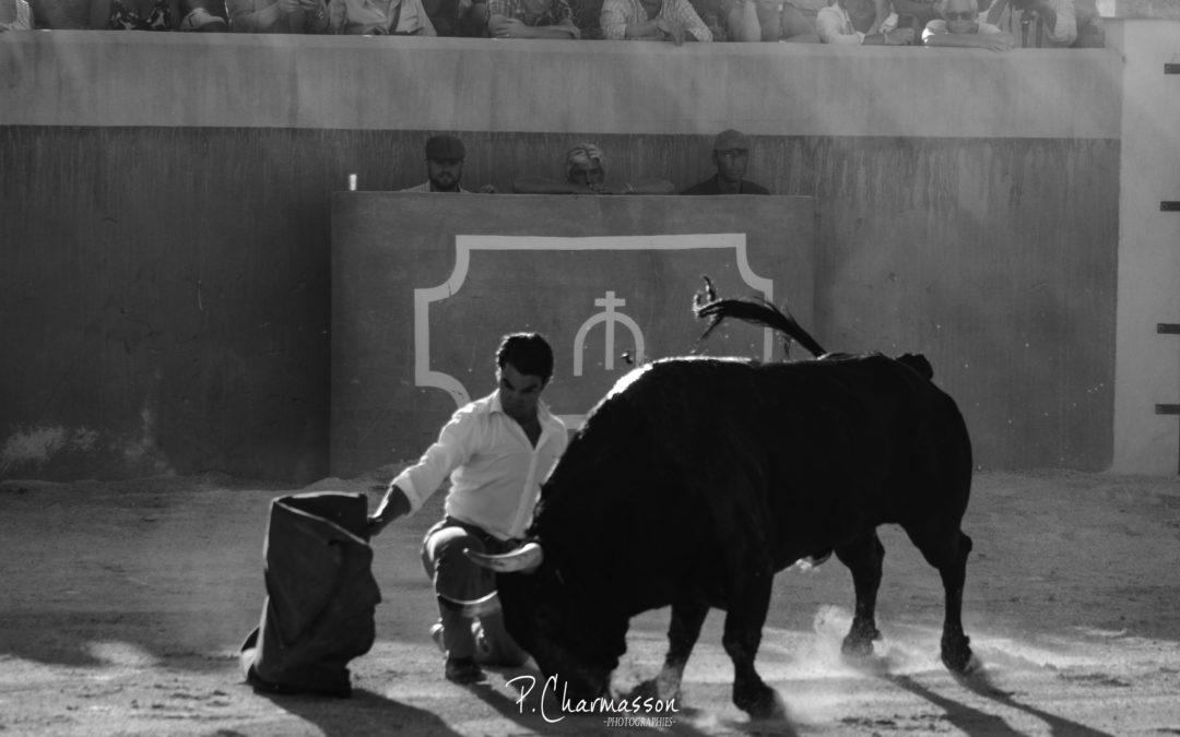 Mercredi au Campo chez Valverde – Reportage photographique de la deuxième journée…