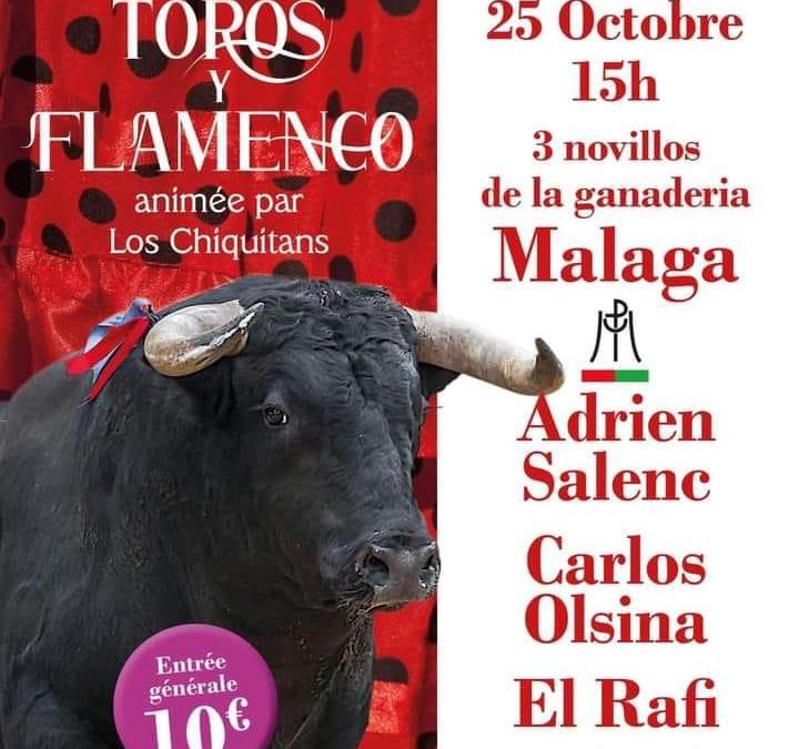 SAINT-GILLES – La Fiesta Campera Toros y Flamenco c'est ce dimanche…