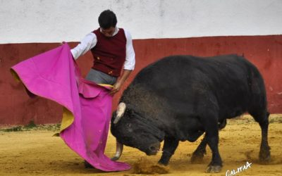 Le novillero Cristóbal Reyes va rejoindre le Mexique et Juan José Padilla…